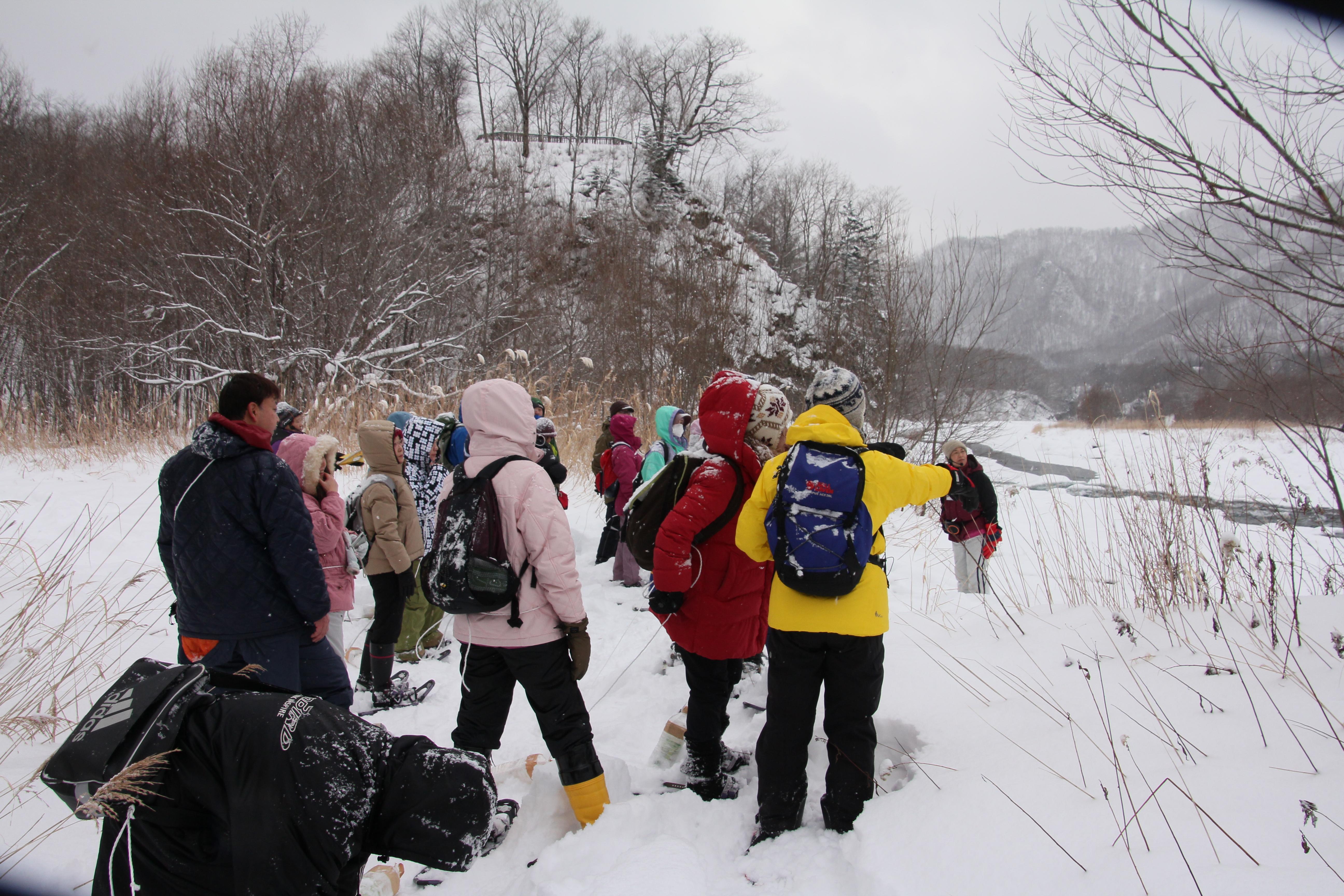 スノーシューDEひだからエコウォーク 冬の日高を満喫 札幌発着 (2/11) 札幌