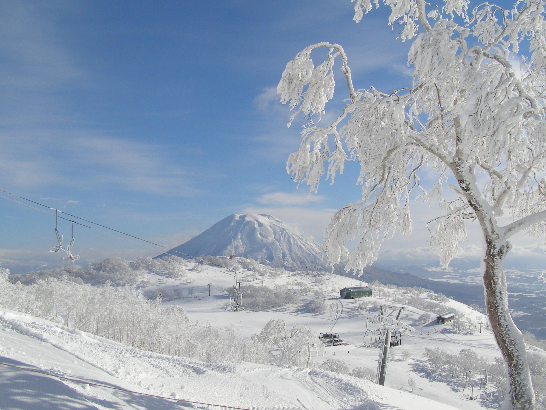 SKIバスパック ニセコアンヌプリ国際スキー場 札幌発着 (12/9〜3/25) 札幌