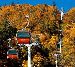 札幌の二大ダムを見学 国際スキー場で紅葉ゴンドラ乗車 札幌発着 (10/14) 札幌