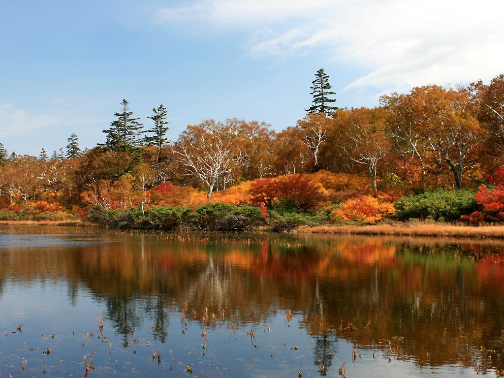 秋の神仙沼 ニセコパノラマラインとランチビュッフェ 札幌発着 (10/7) 札幌
