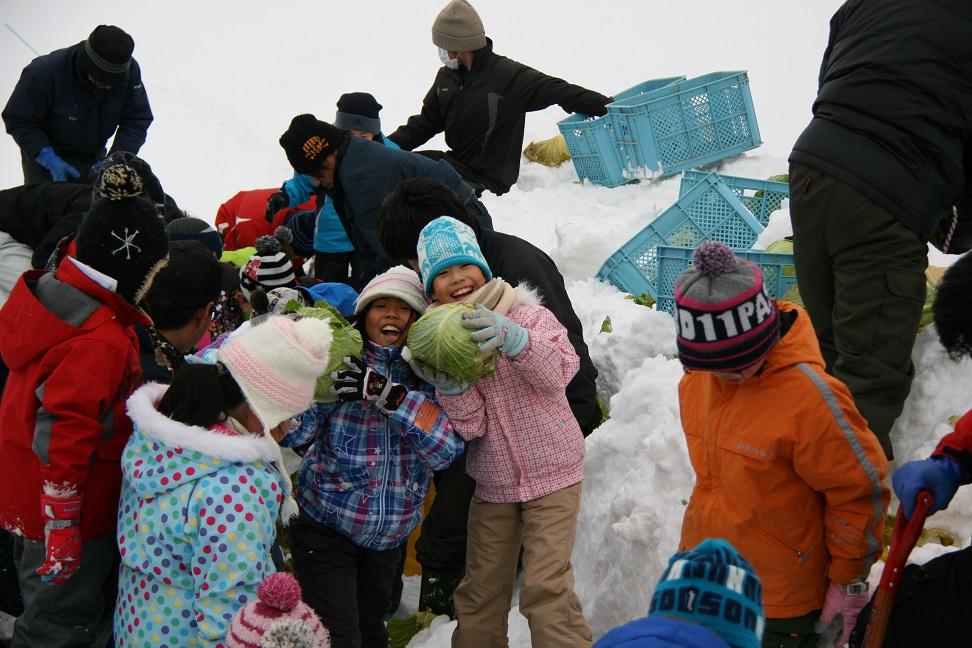 和寒町冬のモニターツアー 名物 越冬キャベツ 掘り体験 札幌発着 (2/20) 札幌